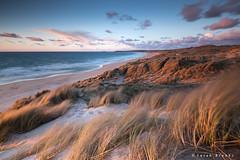 Sea Breeze (Sarah_Brooks) Tags: ocean blue sunset sea white seascape beach water sand cornwall surf wind dune warmth grasses breeze sanddunes latelight hayle seabreeze appicoftheweek