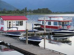 Houseboat and shack (trilliumgirl) Tags: lake canada bc arm salmon houseboat columbia british shack