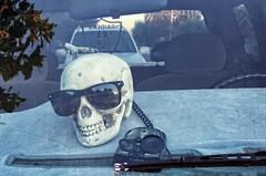 COBRA (akahawkeyefan) Tags: sun skull glasses cobra shades dashboard raiders kingsburg davemeyer redardetector
