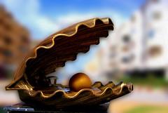 The oyster sculpture (Oussama MORTET) Tags: street sea sculpture mer art beach statue metal gold algeria seaside mediterranean dof shine village carrefour copper oyster plage algérie perle huitre thelook twon méditerranée cuivre fruitdemer salamandre supershot oussama masterpeice mostaganem médit