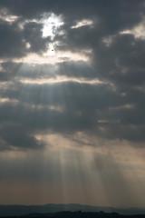 Sun, Sunbeams and Swallows (warth man) Tags: home birds d750 sunbeams swallows earlyevening nikon85mmf18 southlakeland