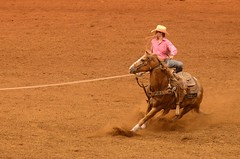 Maybe It's the Saddle (Get The Flick) Tags: horse cowboy finals rodeo lariat roper lasso perryga tiedownroper georgianationalfairgroundsagricenter georgiahighschoolrodeoassociation