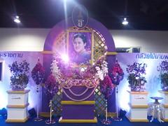 IMG_20160321_111737 (Sasha India) Tags: flowers orchid thailand orchids bangkok exibition apoc   apoc12