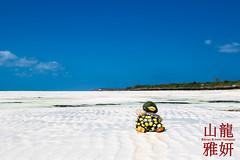 Boxer Duck loving his beach vacation (DragonSpeed) Tags: tanzania indianocean zanzibar lowtide whitesand tidalflats jambiani duckduck boxerduck