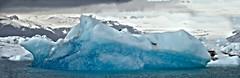 An iceberg in Jkulsrln (joxeankoret) Tags: blue lake ice iceland glacier iceberg jkulsrln glacial