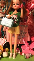 """Hey, Ricky! I was just in a store with loud music and I couldn't hear my phone for a second, wasn't sure if you called. Miss you! Love you. Call me!"" (andersonsmith.katie) Tags: fashion outfit doll display style shelf blythe wendy licca weekender"