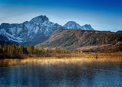 Almsee Nebel (juergen.steilner) Tags: lake alps fog austria see sterreich wasser nebel ducks berge alpen enten bergsee alpensee