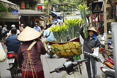 Flower Seller (tj.blackwell) Tags: vietnam hanoi fareast eastern city life travel tourism sony a7 a7ii people street scenery vietnamese world oldquarter market hoankiem flowers yellow seller basket bicycle
