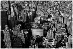 _MTA3097.jpg (MoyseTaton) Tags: park new york city urban rescue usa newyork building love rock brooklyn jaune square liberty fire amazing fuji state time top manhattan taxi great central grand liberté empire flatiron ville unis américain xe1 amerique états xt1 dowtone mildeltown
