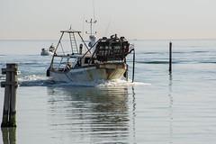 Rckkehr (grasso.gino) Tags: italien sea italy boot boat fishing nikon meer italia schiff marche marken fano fischen d5200