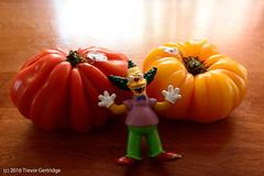 Ketching up... (Trevdog67) Tags: toy ketchup tomatoes simpsons krusty rebus heirloom antiques heinz krustytheclown catchingup pun playonwords krustytheklown ketchingup yardsailing