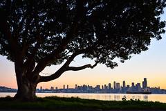 Dawn, New Year's Day (Penseroso) Tags: seattle skyline dawn 1685 nikond7100