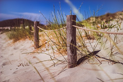 Happy beach fence friday (thethomsn) Tags: hff fencefriday fence rope beach travel holiday bay grass plants outdoors italy sardinia sardegna zaun dof sigma 30mm thethomsn wood muted creamy focus