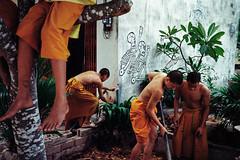 *MONKS WORKING. (Sakulchai Sikitikul) Tags: street leica film 35mm thailand kodak streetphotography monk snap summicron 200 songkhla ttl m6 hatyai