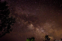Milky way (@Dpalichorov) Tags: sky mist tree nature night dark way stars landscape lights nikon skylight bulgaria nebula milky milkyway varna nikond3200 d3200