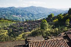 Biasha Miao Village (Ben-ah) Tags: china mountain landscape village guizhou miao ethnic minority hilltop basha biasha