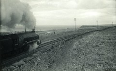 img789 (OldRailPics) Tags: steam aberdeen kingfisher area british locomotive railways 60024