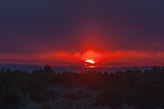 forest fire sunset (Jeff Mitton) Tags: sunset landscape colorado smoke forestfire sagebrush coloradoplateau wondersofnature pinyonjuniperwoodland earthnaturelife mcinniscanyonsnationalrecreationarea