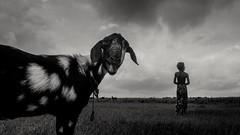 2016-07-04_09-27-18 (Extinted DiPu) Tags: world street camera monochrome canon river blackwhite expression candid bare exploring lifestyle scout streer padma lifescape kushtia canon700d shilaidah peopleofpadma scoutex
