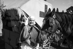 WW1 History Actor and Her Horse (sglover92) Tags: people army dawn march shrine steps australia melbourne rememberance soldiers service vic crowds important veterans anzac bugle