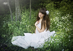 Innocence (M.D Art) Tags: flowers blue white cute green nature girl field forest reading book flying dress little pages young adorable sheets page fields maid