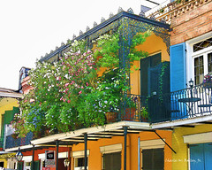 French Quarter House with Flowers, New Orleans (Digital Cartoon)