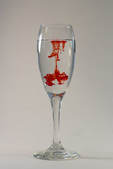 Red (czar.chasm) Tags: red food water glass wine coloring splash liquid