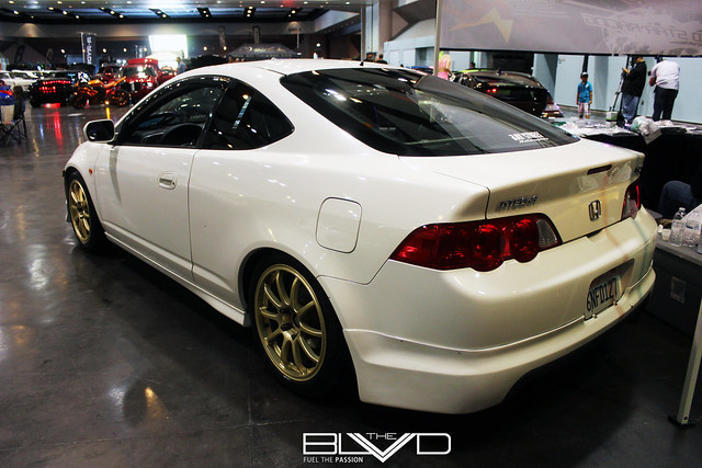 acura rsx hotimportnights