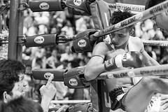 Focus! (Alatoire Photography) Tags: knockout boxer boxing ufc muaythai tko kickboxer thaiboxing mma omnoiboxingstadium