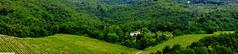 20130618_Toscane_A0417 (Artois Flandres Photos: Club photo de Livin) Tags: italy landscape vacances holidays italia it tuscany chianti paysage toscane vignes italie vacanza panoramique 2013 landscapeoftuscany rosanasullarno paysagedetuscane
