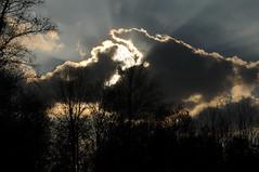 Himmel ber dem Tetenhusener Moor (Chironius) Tags: sunset sky clouds germany atardecer deutschland evening abend zonsondergang tramonto nuvole sonnenuntergang dusk himmel wolke wolken pantano peat ciel cielo swamp bottoms alemania marsh dmmerung moor nuage bog crpuscule landschaft marais allemagne nube hemel germania schleswigholstein sump schemering crepuscolo gkyz  ogie abends sumpf pomie   niemcy tourbire   turbera pomienie marcageuse szlezwigholsztyn