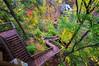 Stairs With a View (Doug Wallick) Tags: autumn wisconsin stairs view falls winding cascade osceola lightroom a55 mygearandme mygearandmepremium