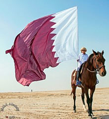 Qatar National Day 2013      (mohd alsulaiti) Tags: people horse hot canon photography google gallery day mare photographer flag group hard photographers national 7d knight doha qatar qat 2022  2016 2015 qtr    dec18  photographique 18dec 2013           qatarnationalday       celebratesthestateofqatarondecember18ofeachyearsnationalday andheldalotofculturalandsportingeventsandartisticperformances    instagramenjoyqtr