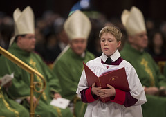 Pope celebrates Mass with new cardinals (Catholic Church (England and Wales)) Tags: new pope with mass cardinals celebrates