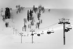 _dsc1597_q1.jpg (Shams Ul Haq Qari) Tags: people blackandwhite snow mountains alps cold monochrome snowboarding skiing wires cabl