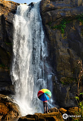 DSC_1054_3 (ALL DAY I DREAM ABOUT PHOTOGRAPHY.) Tags: ocean blue sunset sea sky india color beach nature water umbrella amazon kerala falls jungle waterfalls sriharsha vazhachalfalls vazhachalfallsissituatedinathirappilly