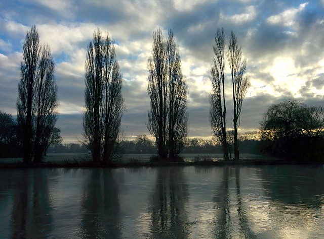 River Thames Abingdon - 2014