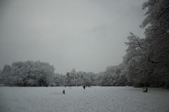 Snow in Windlesham