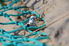 Stormy caught in the nets (LynG67) Tags: beach march sand lego st