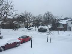 Snowstorm: