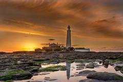 St Mary's Whitley Bay (Ellieslion) Tags: lighthouse whitleybay canon1022mm stmaryslighthouse pwlandscape ellieslion