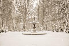 Zrinjevac 1 (Francesca's Photography) Tags: park winter snow croatia zagreb zima hrvatska snijeg zrinjevac zagabria