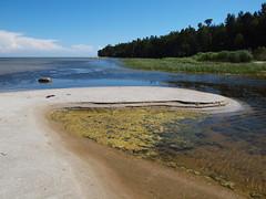 Wonderful Beaches of Ruhnu Island, 1 (Axiraa - back very soon) Tags: sea summer sun beach water stone landscape island coast seaside sand estonia baltics ruhnu vanagram