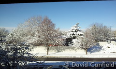 February 17, 2015 - A snowy landscape in Lafayette. (David Canfield)