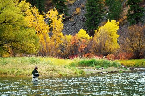 Triple Creek Ranch Fly Fishing