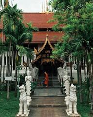 Peaceful (Khem ☺) Tags: trees thailand temple monk wat sweeping วัด พระ ต้นไม้ วิหาร สงบ กวาด