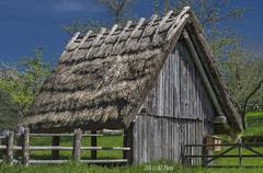 Cuttle shelter with thatched roof - II (KF-Photo) Tags: zaun stroh strohdach vogelhuschen beuren rundbalken viehunterstand