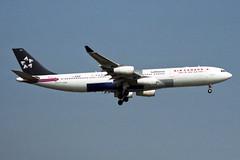 Star Alliance (Air Canada) Airbus A340-313 C-FYLD (Kambui) Tags: frankfurt airplanes planes fra a340 aviones avions aircanada flugzeuge  avies staralliance aeroplani kambui  cfyld