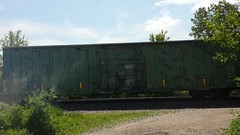 BUKET TKO (Benchology101) Tags: graffiti traingraffiti tko buket wholecar benching tkograffiti buketgraffiti