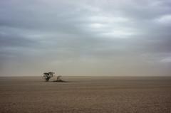 dust storm, The mallee (thoughtfactory) Tags: autumn digital imac victoria duststorm phototrip topographics ouyen leicasummicron35mmf20asph garysauerthompson themallee novoflexadaptor lightroom5 sonynex7